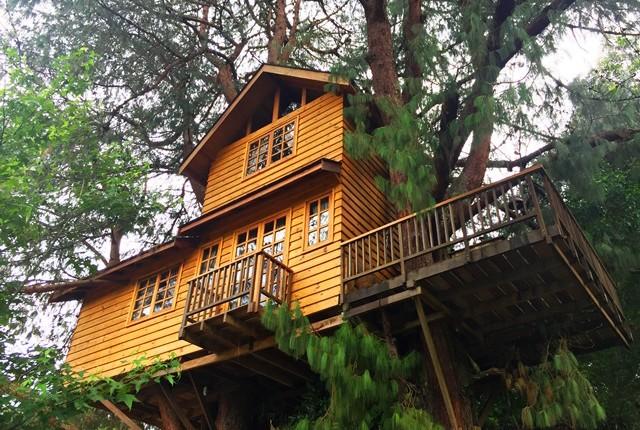 Casa na Árvore em Campos do Jordão